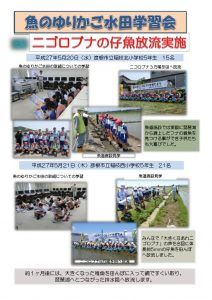 thumbnail of 仔魚放流まとめ(5月)