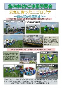 thumbnail of 稚魚放流まとめ(6月)
