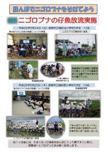 thumbnail of H29仔魚放流まとめ(5月)