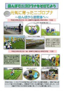 thumbnail of H29稚魚放流まとめ(6月)